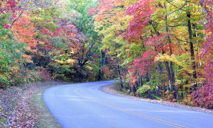 Autumn colors on the Blue Ridge Parkway near Asheville, North Ca